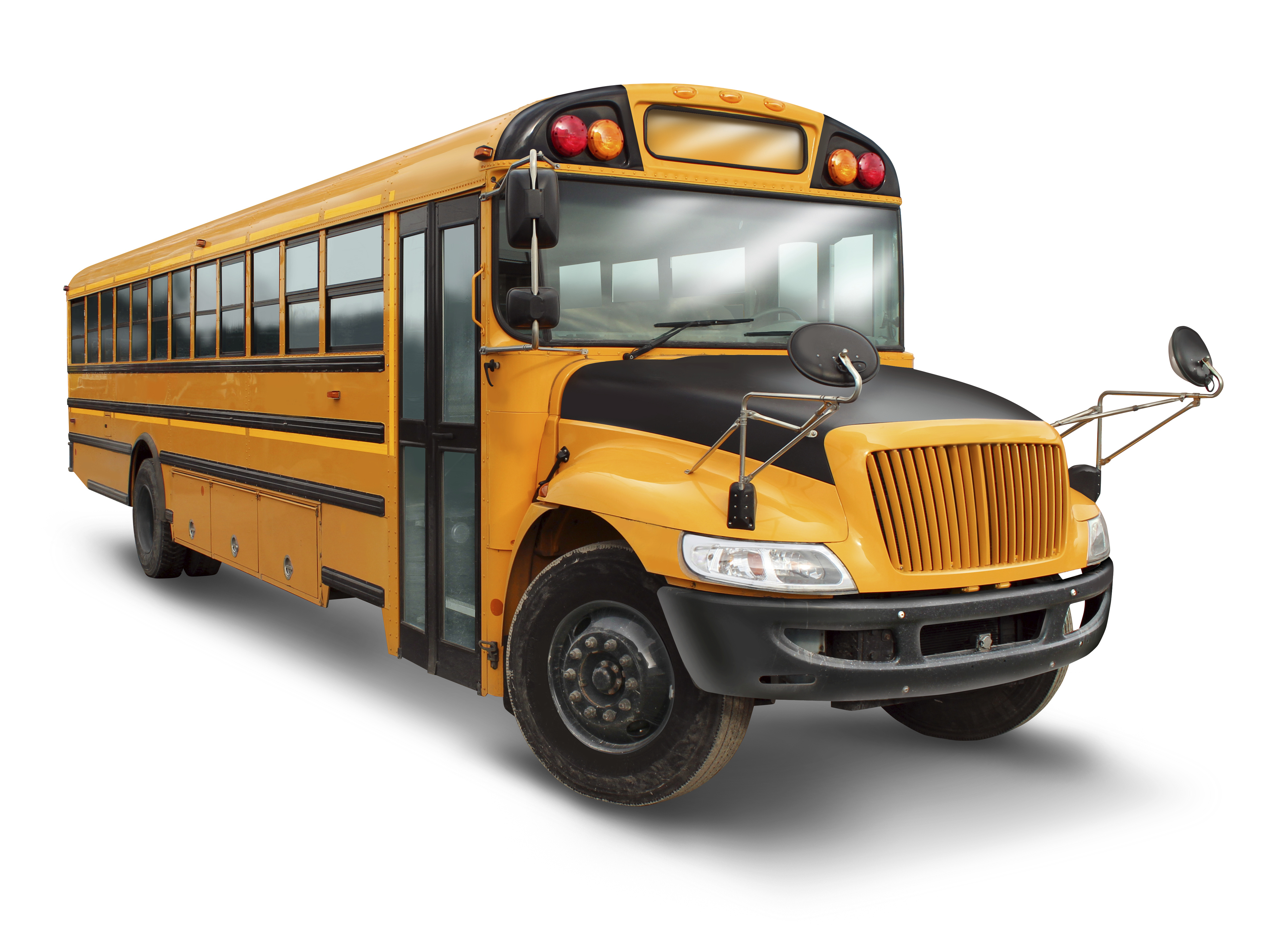 Blue Bird Bus >> Welcome to Transportation Services